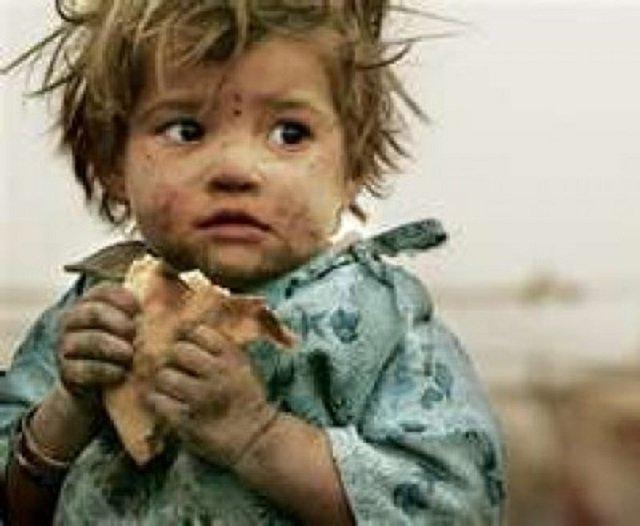 The Syrian Animal Needs Saving