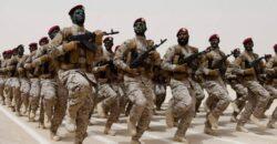 A Professional Gulf Army