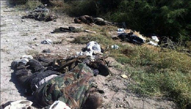 Five Less Pro-Assad Terrorists