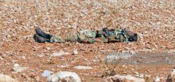 250 Pro-Assad Troops Killed Near Damascus