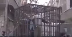 Caged Alawites as Human Shields to Deter Barrel Bombs