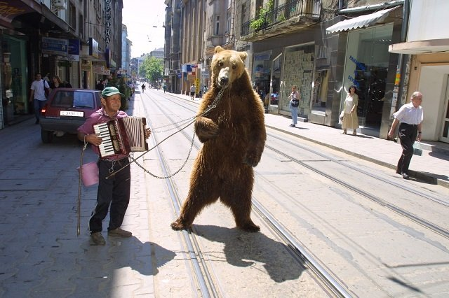Watch For Your Feet When Dancing With a Russian Bear