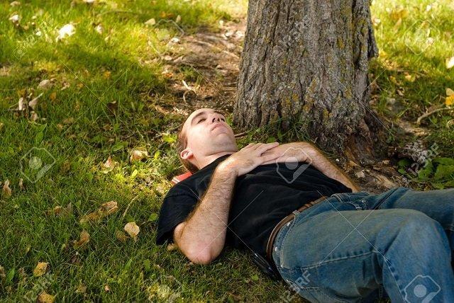 While Barack Obama Naps Under a Tree