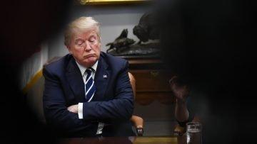 Falafel Exposes Trump Real SAT Scores