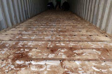 Add Drug Smuggling to Assad Resume